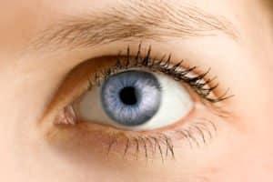 Die Augenlinse und ihre Funktion