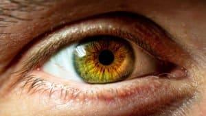Regenbogenhaut des Auges